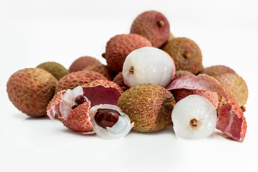 Arts and Crafts Ideas Kids Adults Lychee Seeds